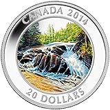 Rápidos Parque Provincial Algonquin C$20 Moneda Plata - Canadá 2014