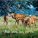 Aux Bois des Cerfs: Cerfs en Liberte...