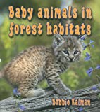 img - for Baby Animals in Forest Habitats (Habitats of Baby Animals) book / textbook / text book