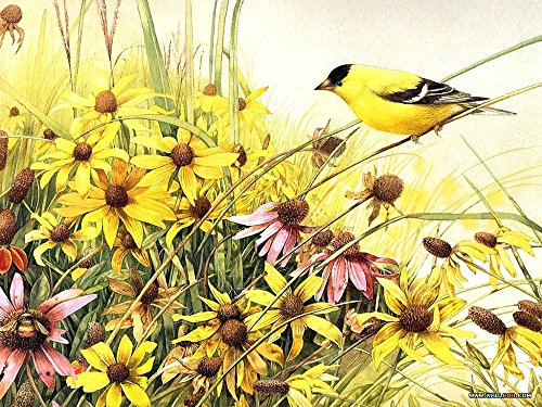 Diy oil painting, paint by number kit- Bird and yellow flowers 16*20 inch.