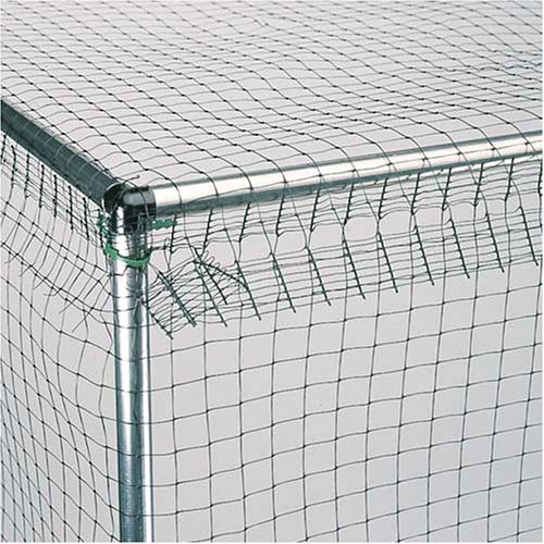 Two Wests Standard 6' High Fruit Cage 12' x 12'
