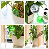 Generic New Automatic Self-Water Bulb Device Globe Home Garden Sprayer Sprinkler Houseplant Flower Pot Planter...