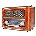 Dual NR 1 DAB Nostalgieradio (UKW/DAB(+)-Tuner, Sendersuchlauffunktion, Uhrzeit-/Datumsanzeige, Wecker, LCD-Display) Holzoptik