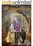 The Labyrinth of Destiny (The Threshold Trilogy Book 3)