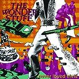 Never Loved Elvis