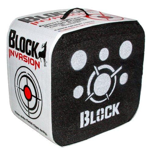 Field Logic Block Invasion Archery Target, 18-Inch (Black Hole Archery Target compare prices)
