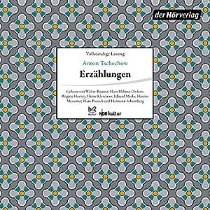 Erzählungen: Die Fürstin / Grischa / Der Student / Rothschilds Geige / Seelchen / Der Roman einer Baßgeige / Drei Skizzen Hörbuch
