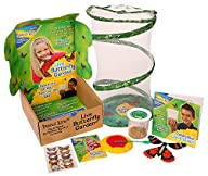 Butterfly Garden Gift Set with Live C…