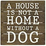 Mud Pie A House Is Not A Home without A Dog Wooden Plaque, Brown, 8 by 8