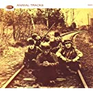 Animals Tracks