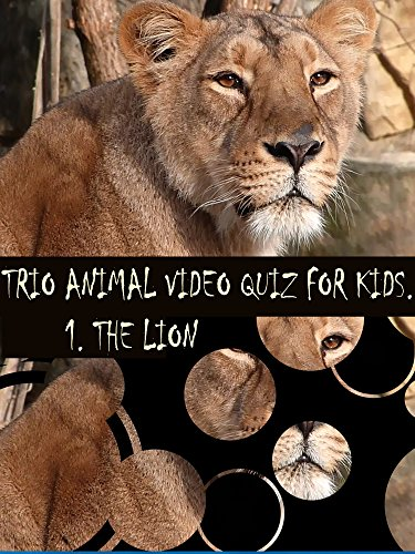 Trio Animal Video Quiz for Kids. 1. Lion on Amazon Prime Instant Video UK