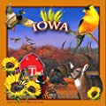 "CoasterStone SQ028 Absorbent Coasters, 4-1/4-Inch, ""Iowa"", Set of 4"