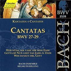 Bach, J.S.: Cantatas, Bwv 27-29