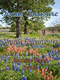 Texas Treasure (Buckley, Texas Series Book 2)