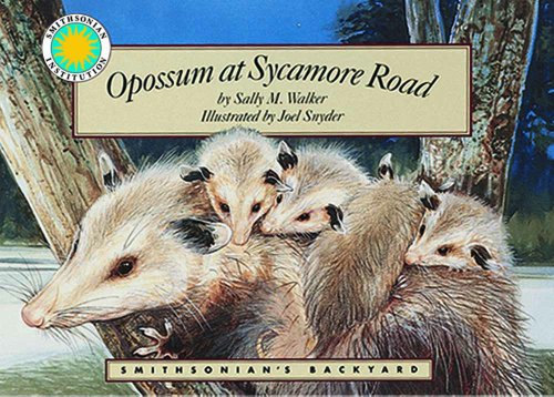 Opossum at Sycamore Road - a Smithsonian's Backyard Book