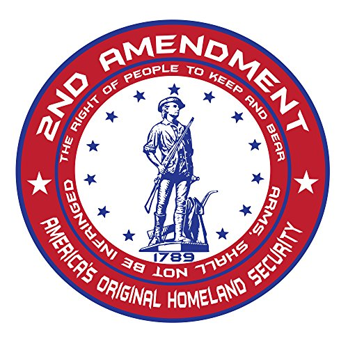 2nd Amendment Shall Not Be Infringed Decal - Sticker Perfect for a Redneck or anyone Proud to bear arms - Perfect Bumper Sticker or window vinal graphic (Right To Bear Arms Window Decal compare prices)