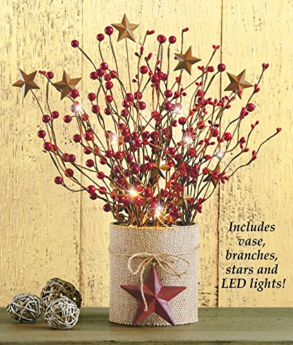 Lighted Country Berry Branches Centerpiece Berry Bath