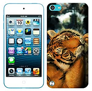 WOW Printed Designer Mobile Case Back Cover For Apple iPod Touch ( 5th Generation)