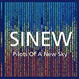 Pilots of the New Sky by Sinew