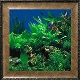 AquaVista AV500SBALE Wall-Mounted Aquarium AV 500 Seaweed Background with Leo Frame