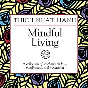 Mindful Living Speech