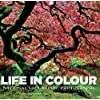 Life in Colour: National Geographic Photographs