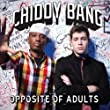 Chiddy Bang - Live in Concert