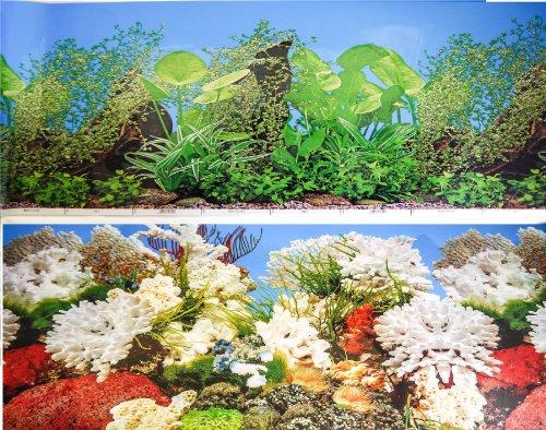 40cm-155-haut-double-face-pour-le-poisson-de-fond-de-lAquarium-de-Tank-Reptile-vivarium-Dcor