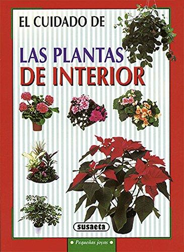 las-plantas-de-interior-pequenas-joyas