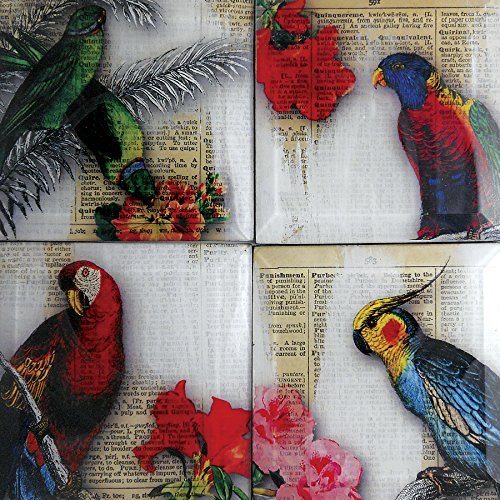 parrot-dictionary-glass-coaster-set-4-or-5-inch-square-from-upcycled-dictionary-page-book-art-wild-w