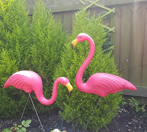 Pair Of Pink Lawn Pond Flamingo Compare Lowest Prices