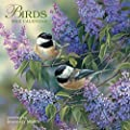 Avalanche January to December, 12 x 24 Inches, Perfect Timing Birds 2015 Wall Calendar by Rosemary Millette (7001606)