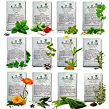 HERBS SEEDS AMERICAN GROWN DOUBLE SIZE Quantity Heirloom Culinary Germinate-Ready Non Hybrid Starting Kit For Planting Perennial Organic Home Herb Garden. Gardening Zone 3 to 11 plus MARKERS by Pumene
