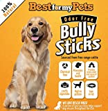 Best Natural Bully Sticks, Odor Free, Hand-Inspected & USDA/FDA-Approved Bully Sticks, 8 Oz. Bag - 100% Premium Beef Grain Free Dog Treats, Healthy and Delicious All Natural Dog Chews, Your Dog Happy or Your Money Back * 200% GUARANTEE * (6 inches - 8 Oz Bag)