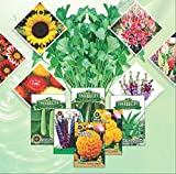 SUPER DESI COLLECTION OF 12 TYPES OF FLOWER AND VEGETABLES , BUY NOW TO GET CORIANDER AND ONE SURPIRISE FLOWER FREE- ALL SEEDS 50+ SEEDS BRAND Indica/Imperial Sold by Super Agri Green