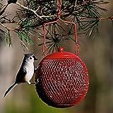 Seed Ball Wild Bird Feeder