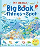 Gillian Doherty The Usborne Big Book of Things to Spot (Young searches)