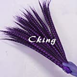 Maslin 100pcs Natural Dyed Purple Lady Amherst Pheasant Tail Feather 50-100cm 20-40inch Long Chicken Pheasant Tails - (Color: 90 to 100cm 100pc) (Color: 90 to 100cm 100pc)