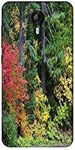 Snoogg Autumn Forest Background Designer Protective Back Case Cover For Micromax Canvas Nitro 3 E455