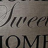 DZT1968® Home Sweet HomeThrow Pillow Cushion Case Cover Protector 18*18