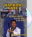 img - for Hapkido Cane; Big Stick Fighting from the Dojo to the Street book / textbook / text book