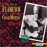 Art Of Flamenco Guitar