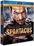 Spartacus : Le sang des Gladiateurs - L'intégrale de la Série [Blu-ray]