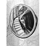 Soane's Convex Mirror Print by David Valinksy