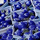 Sale Seeds Vegetables Sementes 100pcs 100% Genuine Top Quality Sweet Seeds - Bonsai Plant Fruit Vegetables