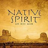 Native Spirit: A Native American Music Experience