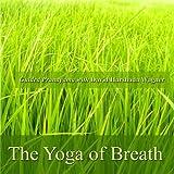 The Yoga of Breath - Guided Pranayama with David Harshada Wagner