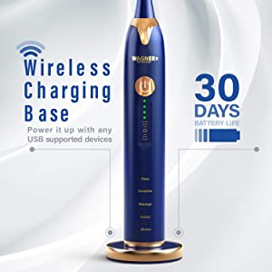WAGNER Switzerland JUBILEE EDITION SuperSonic toothbrush with PRESSURE SENSOR. 5 Brushing Modes and 4 INTENSITY Levels with 3D sliding control, 8 DuPont Bristles, Premium Travel Case, USB Wireless