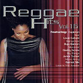 Reggae Hits Vol. 16