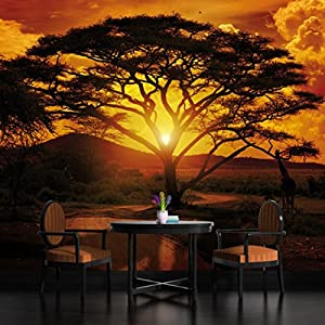 African sunset wallpaper mural for African sunset wall mural